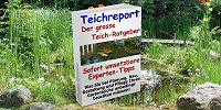 teichreport intern home